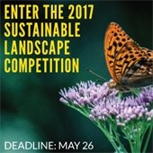 City Seeks Entries for 2017 Sustainable Landscape Competition