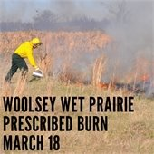 Prescribed Burn at Woolsey Wet Prairie on Monday March 18