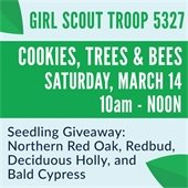 City and Girl Scouts Host Tree Seedling Giveaway