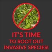 It's Time to Root Out Invasive Species