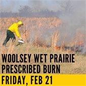 Woolsey Wet Prairie Burn Friday Feb 21