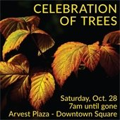 Celebration of Trees 2017