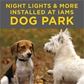 Night lights at Iams Dog Park