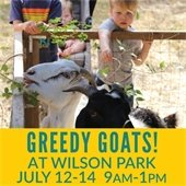 Greedy Goats at Wilson Parks 2018 July