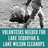 Lake Cleanups