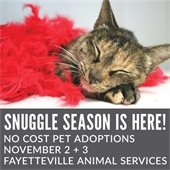 Pet Adoption Fees Waived November 2 and 3