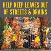 Help Keep Leaves out of Streets and Drains