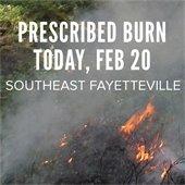 Prescribed burn feb 20