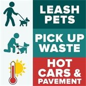 Summer reminders for pet owners: leash pets, pick up waste, avoid hot cars & pavement