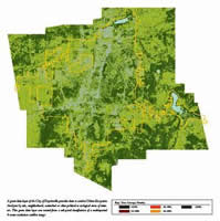 Smaller tree canopy map