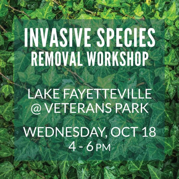 Invasive Species Removal Workshop October 18