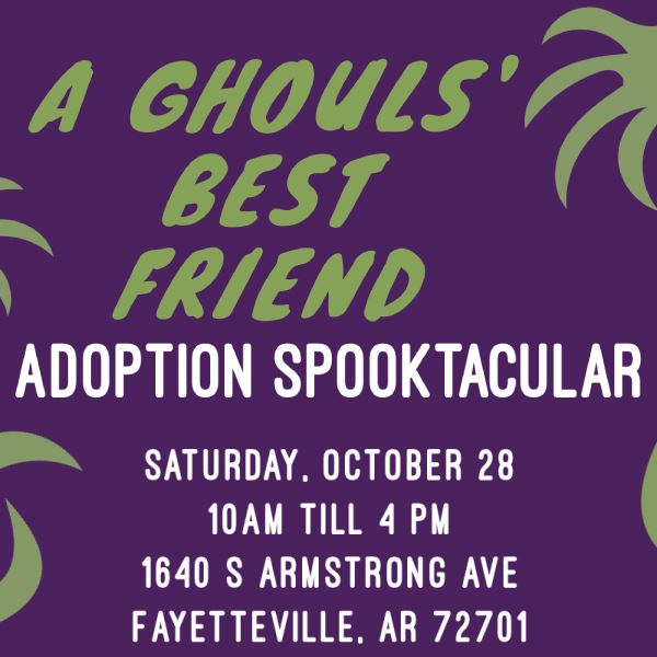 Adoption Spook-tacular