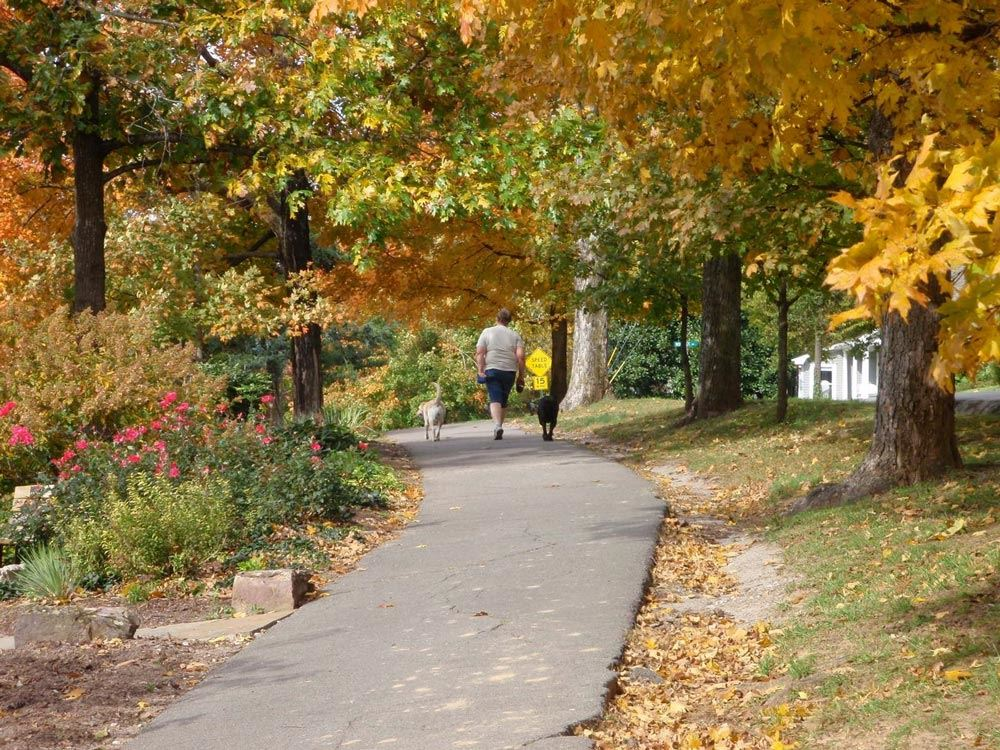 Walking and Hiking Trails   Fayetteville, AR - Official Website