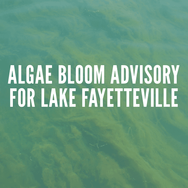 ALGAE BLOOM ADVISORY FOR LAKE FAYETTEVILLE