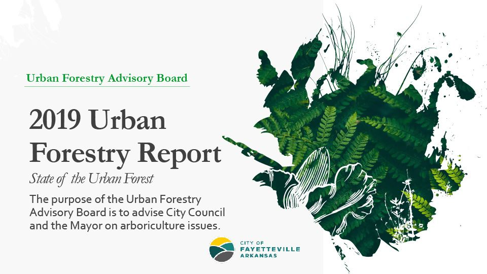2019 Urban Forest Report   State of the Urban-01