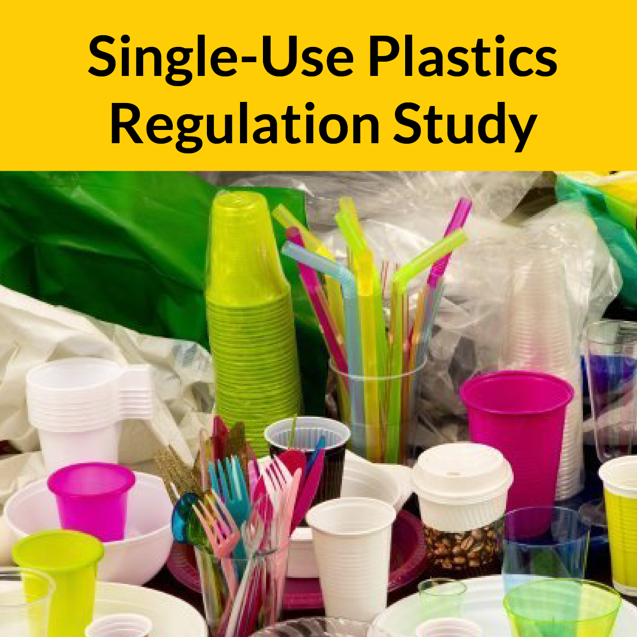 Single-Use Plastic Regulation Study