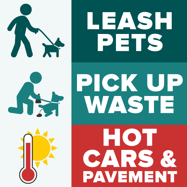 Summer pet owner reminders: leash pets, pick up waste, be aware of heat danger