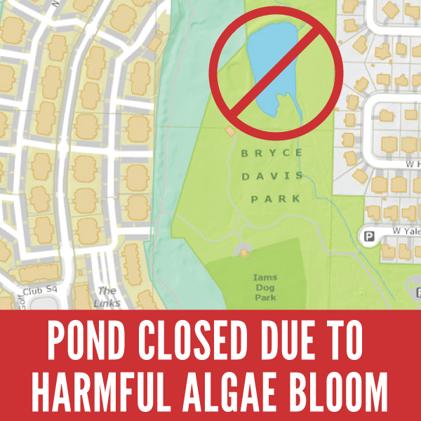 Pond Closed Due To Harmful Algae Bloom
