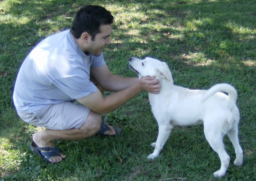 Volunteer crouches down to pet a white dog
