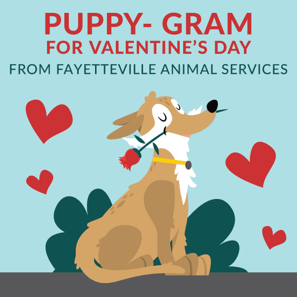 Puppy-Grams from Fayetteville Animal Services