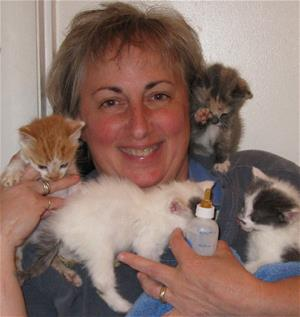 Foster mom smiles for camera while also holding a bottle and 4 kittens around her neck