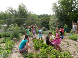 Children plant celery in community garden while being supervised