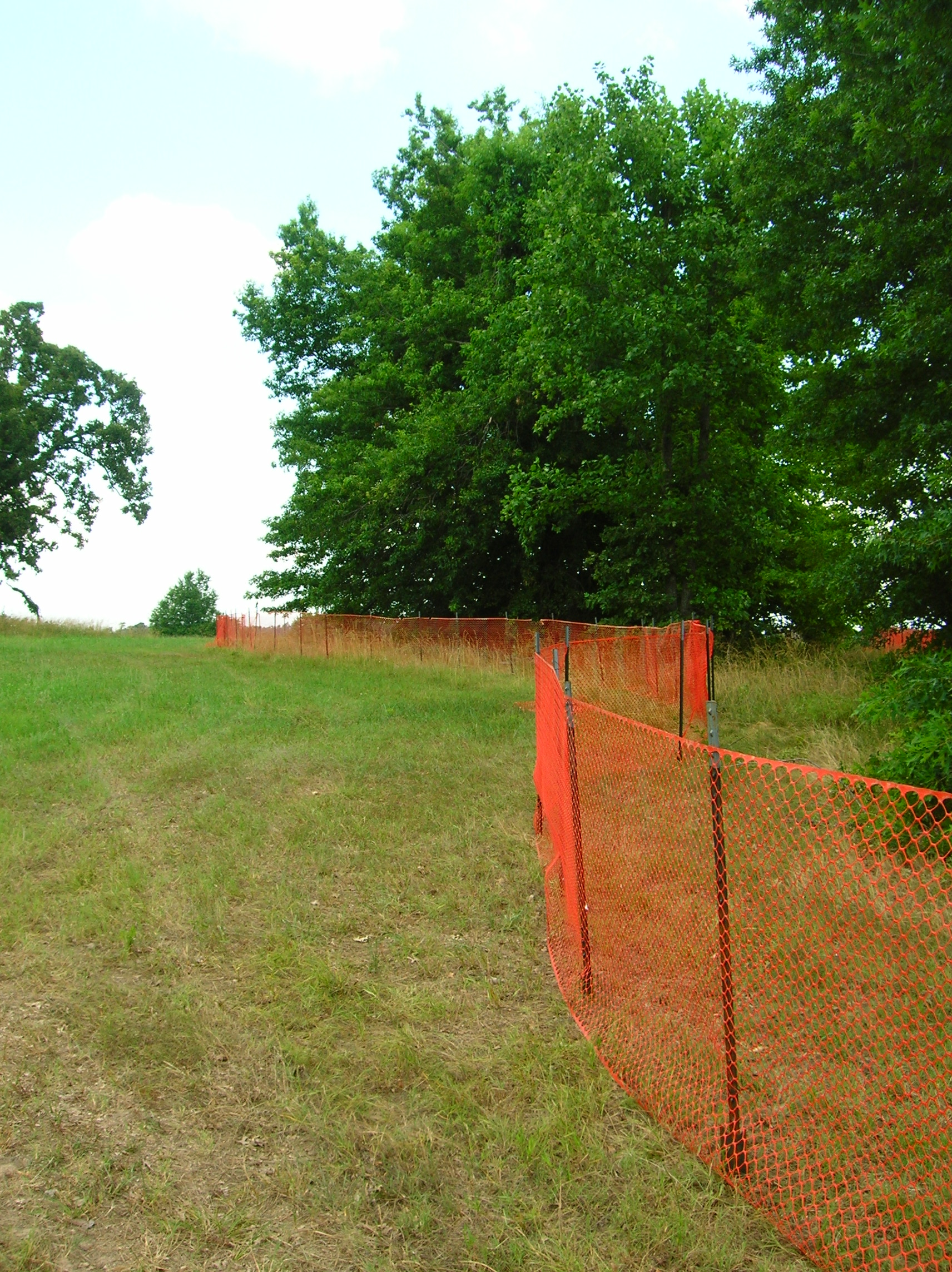 Orange plastic fence marks off tree preservation area