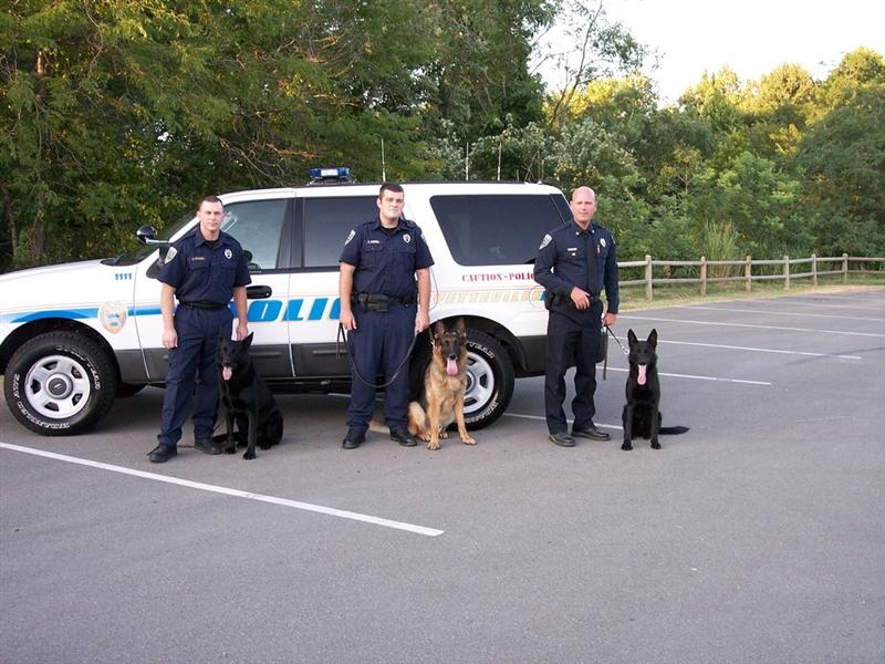 K9 Unit Posing in Front of Vehicle