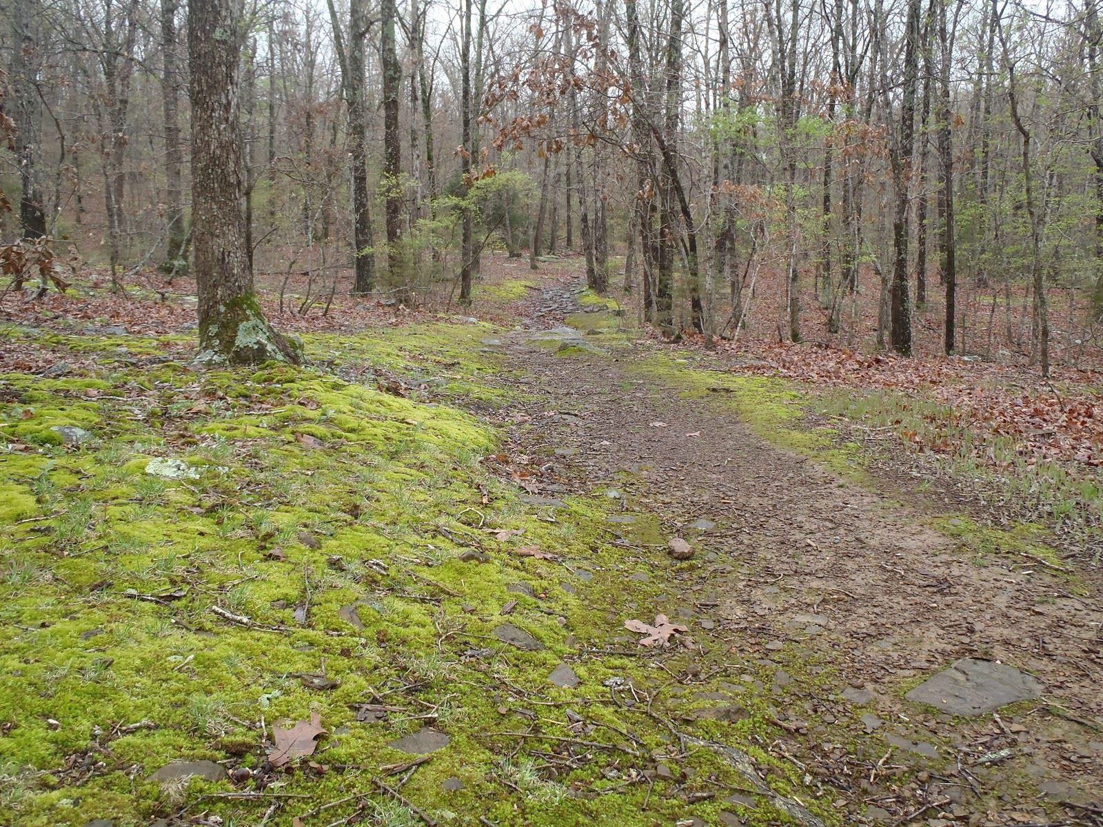The Pig Trail Arkansas Map.Fayetteville Ar Official Website