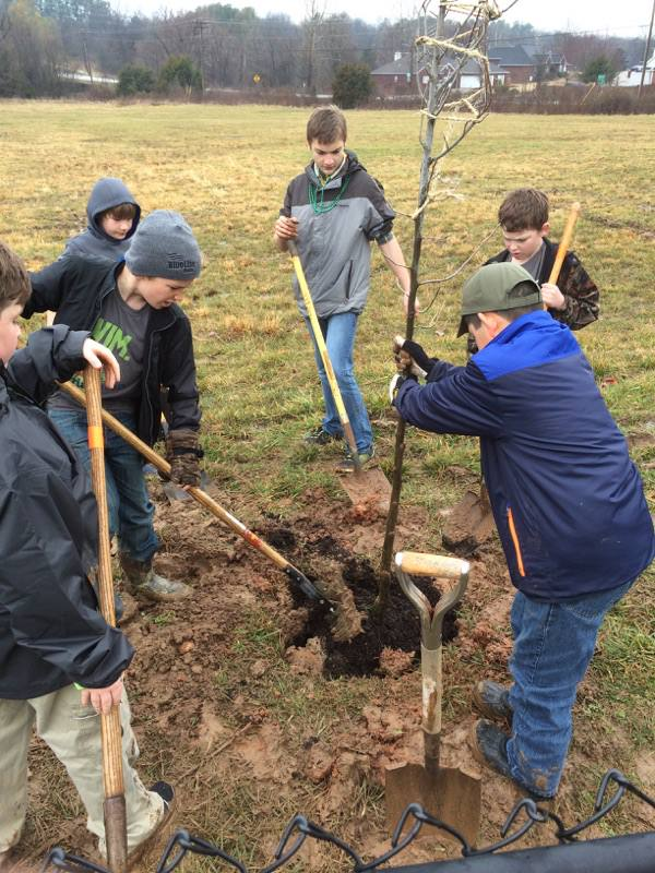 Younger Scouts planting tree.jpg