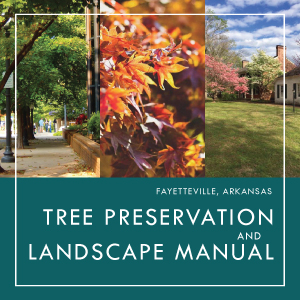 Tree Preservation and Landscape Manual