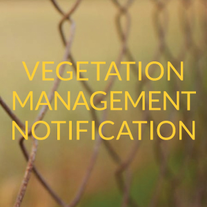 Vegetation Management Notification