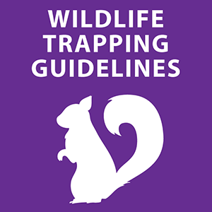 Wildlife Trapping Guidelines
